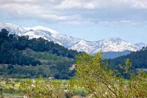 Schnee im Tramuntana- Gebirge